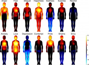 Map bodily emotions