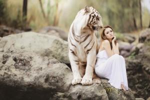 voruw tijger pixabay 20200410